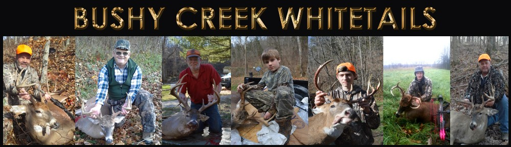 Bushy Creek Whitetail Outfitters